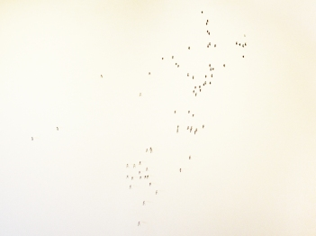 White Maps (3)